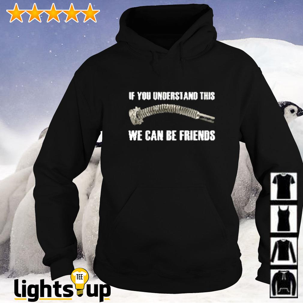 Veteran if you understand this we can be friends Hoodie